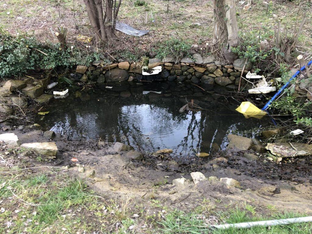 池 水抜き中1
